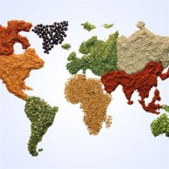 international-food-map-01